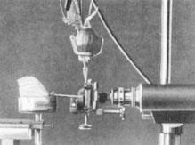 Alexander Gurwitsch's Onion Experiment